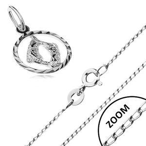 Srebrny naszyjnik 925 - błyszczący łańcuszek, zawieszka znak zodiaku RYBY